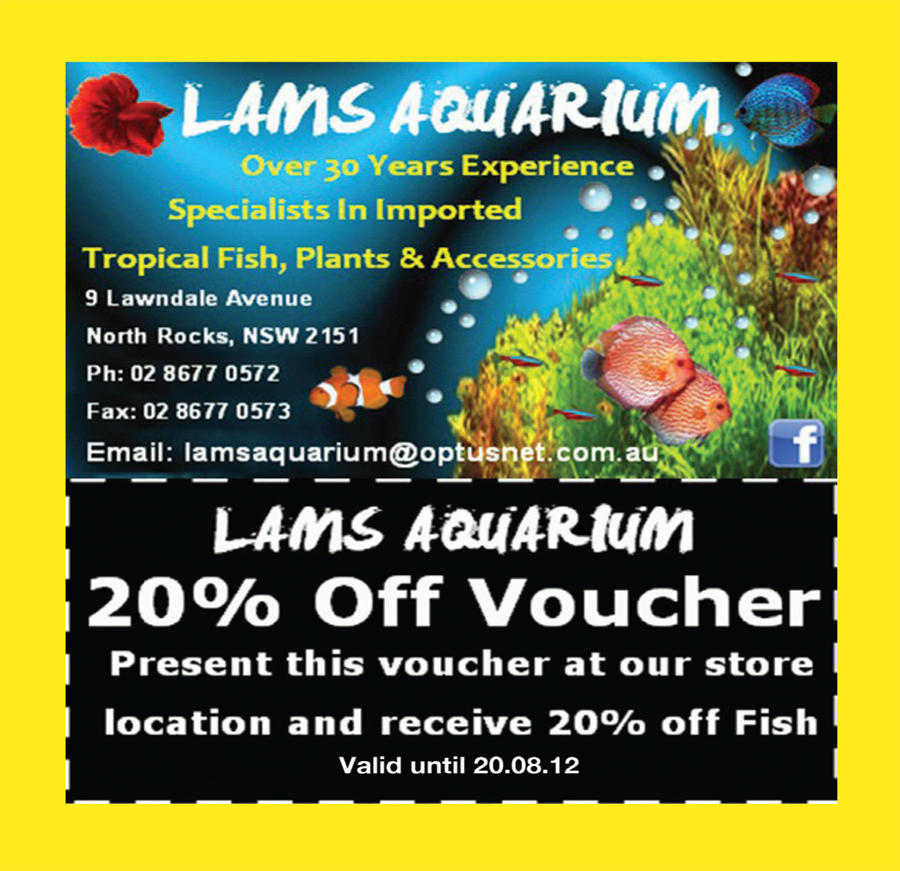 Lams Aquarium (North Rocks) 20% Discount Coupon!